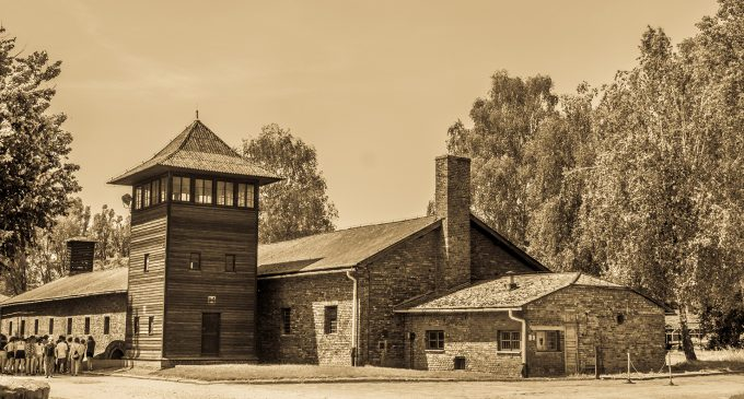 The holocaust, academic freedom and free speech